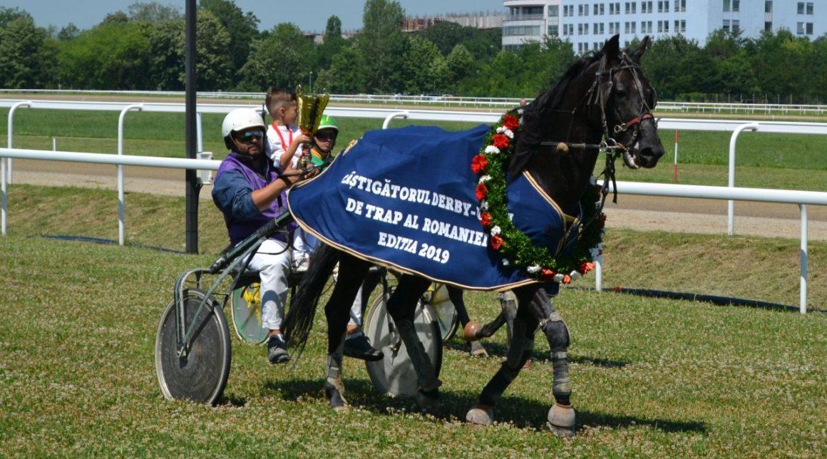 Hipodromul Ploieşti: armăsarul Calypso a câştigat Derby-ul de Trap al României!