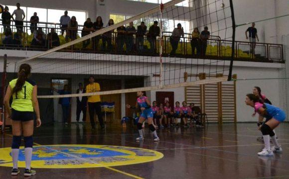 Debut cu trei victorii pentru echipele de minivolei ale CSM Ploieşti!
