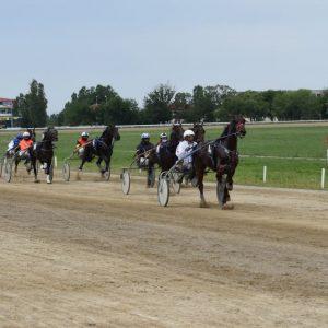 Participarea cailor în cursele de trap, condiţionată de plata debitelor de către proprietari!