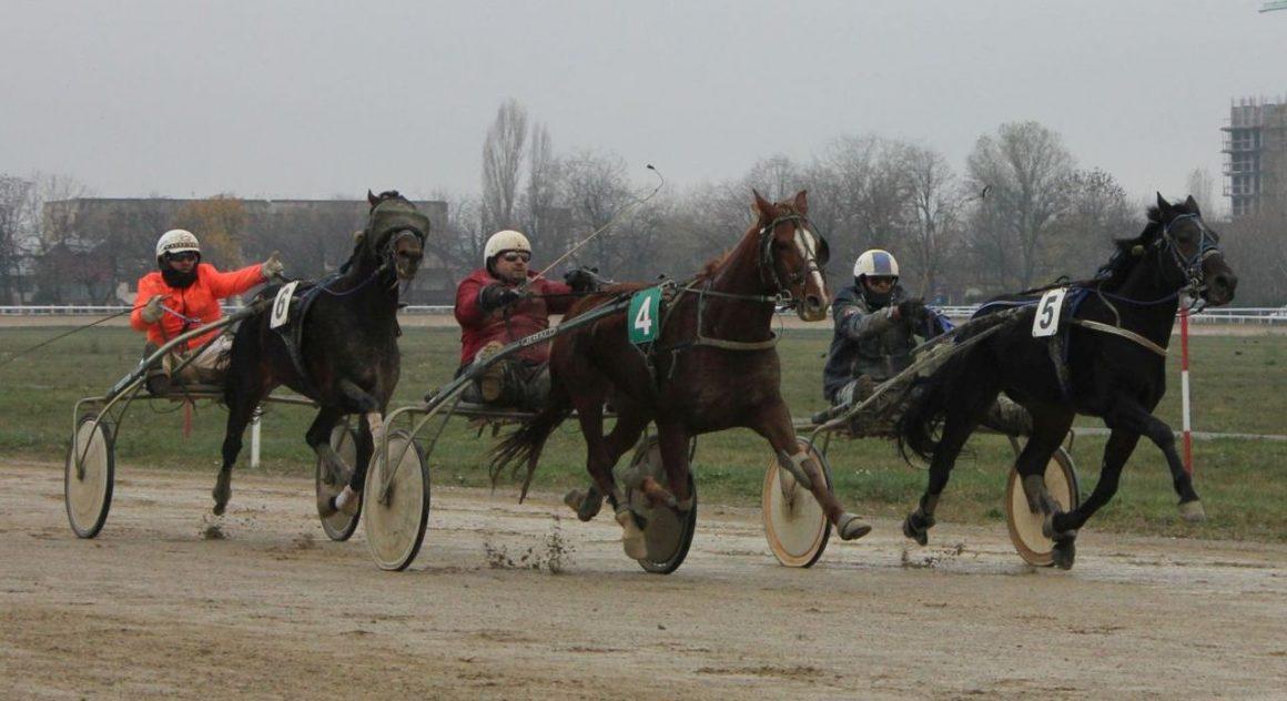 Hipodromul Ploieşti: duminică se reiau cursele oficiale, dar fără spectatori!
